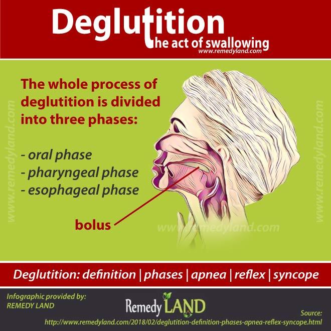 deglutition